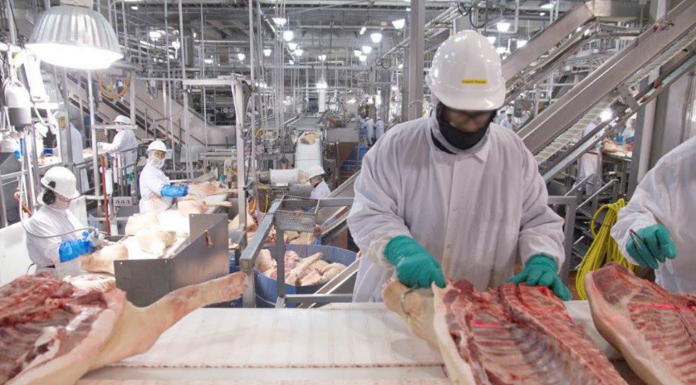 immigrants meat processing