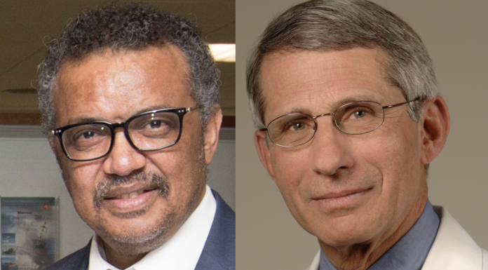 Tedros Adhanom Ghebreyesus and Anthony Fauci