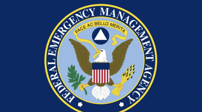 Federal Emergency Management Agency insignia