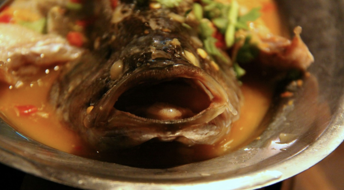 Photo of dish, food, produce, fish, eat, meat, cuisine, asian food, fish head, court, taiwan, chinese food , taken with an Canon EOS 50D 01/26 2017 photo of dish, food, produce, fish, eat, meat, cuisine, asian food, fish head, court, taiwan, chinese food , taken with an Canon EOS 50D 01/26 2017