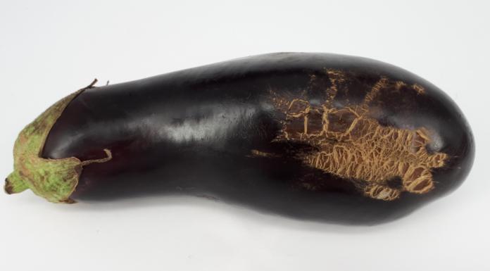 Diseased eggplant
